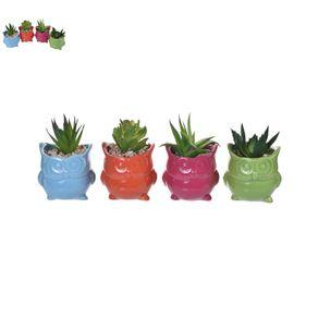 Planta-con-Pote-4surt-8x75x11cm