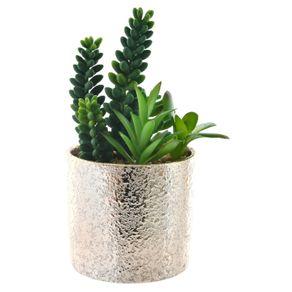 Planta-Art-con-pote