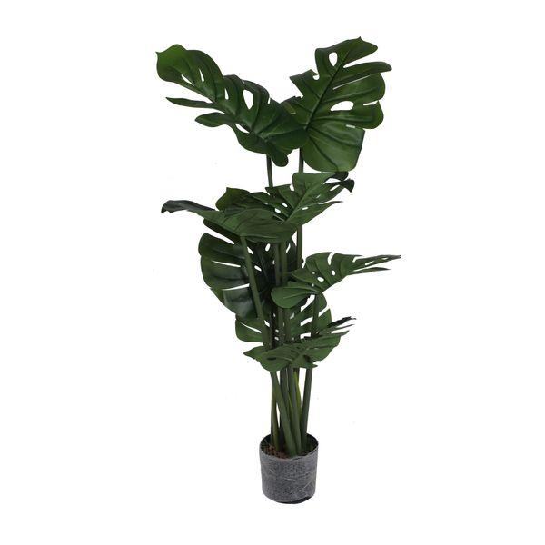 Planta-con-Pote-Hoja-Tropical