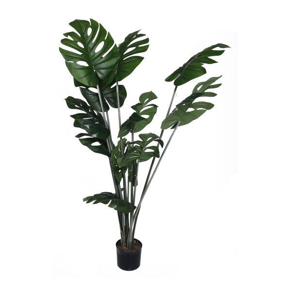 Planta-con-Pote-Hoja-Tropical-Alta