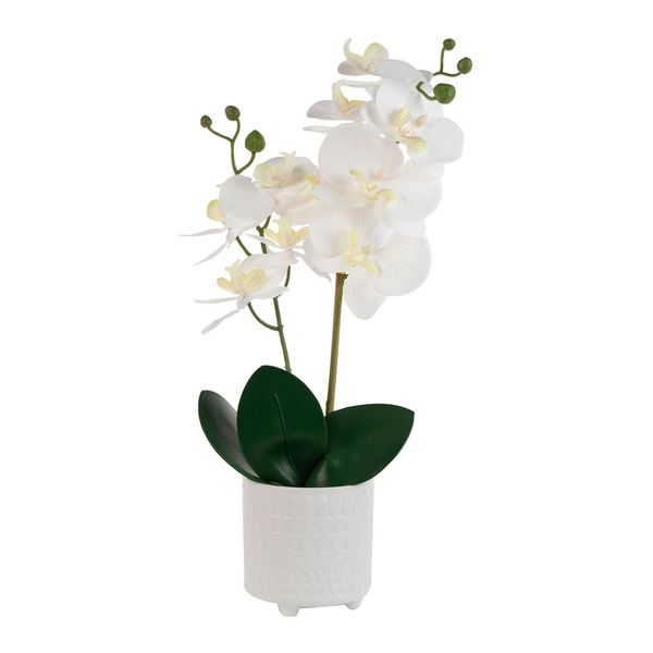 Orquidea-con-Pote-Artificial-Egan