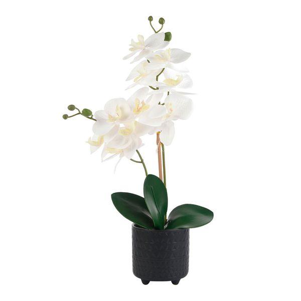 Orquidea-con-Pote-Artificial-Adonia
