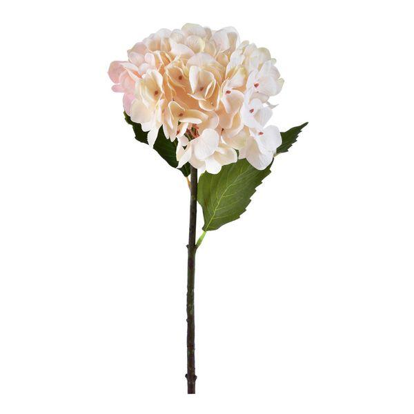 Flor-Hortensia-Amarilla-Dionne