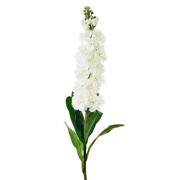 Flor-Stock-Blanca-Suyay