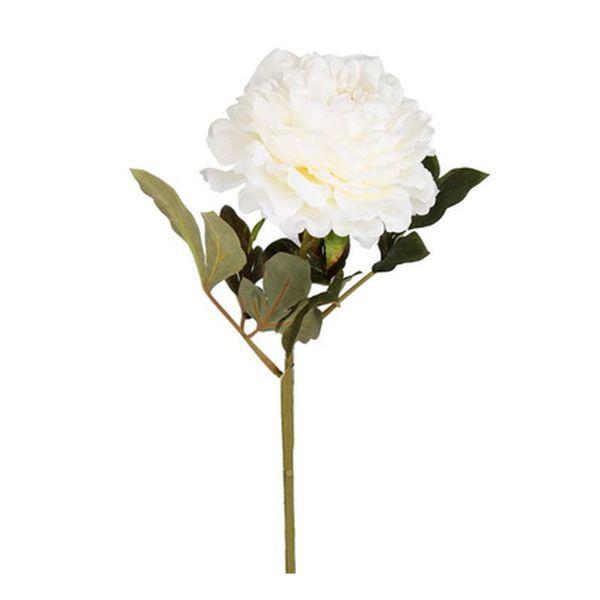 Flor-Peony-Blanca-Mollit
