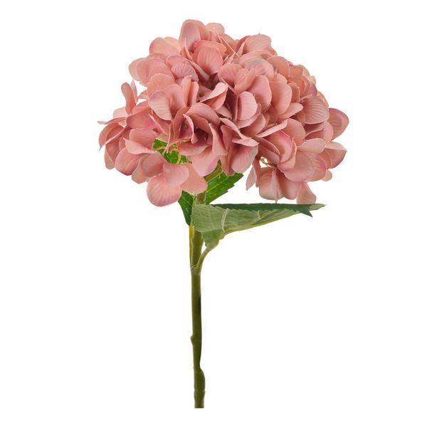 Flor-Hortensia-Mamey-H-Milania