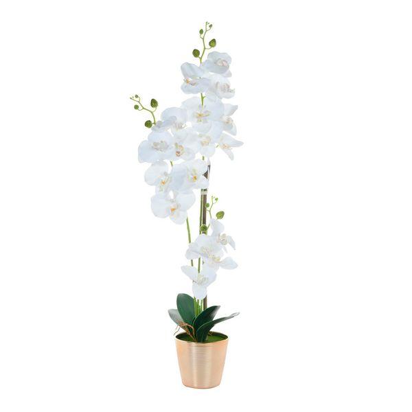 Flor-Orquidea-Blanca-con-Pote-Josune